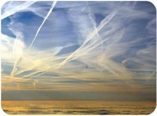 chemtrails poisons